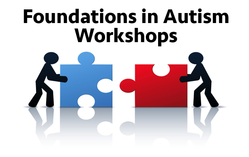 Dpi And Teacch Foundations In Autism Workshops Professional
